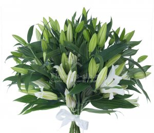 Bouquet of 11 lilies